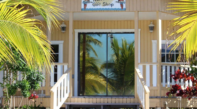 Gift Shop Macaw