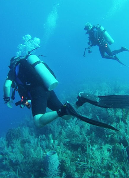 Belize Island Resort - dive