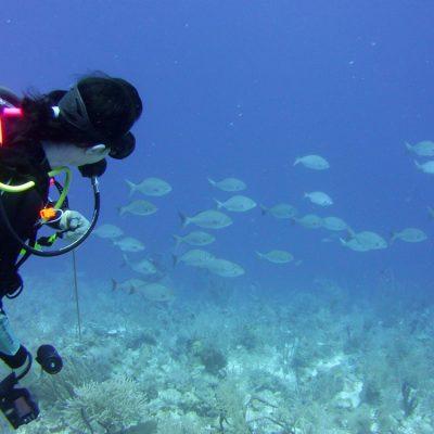 Belize Diving Tours