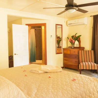 Belize Island Standard Room