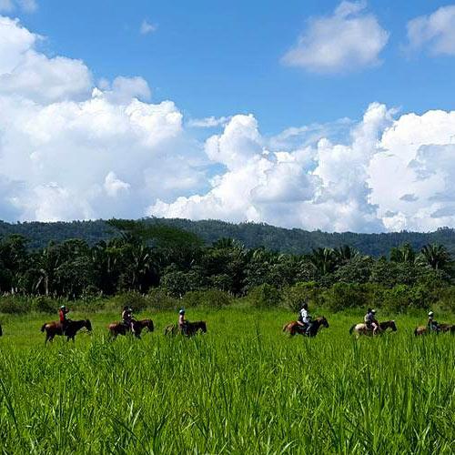 Belize jungle adventure tours horseback